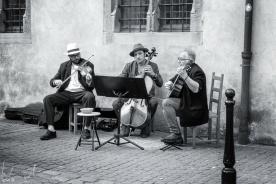 Koifhus, Colmar 2019